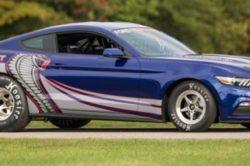 2017 Mustang Cobra 250x166